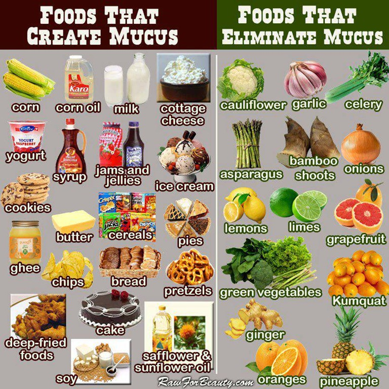 sugar diet chart: Food nutrition part 3 what foods to eat how you living