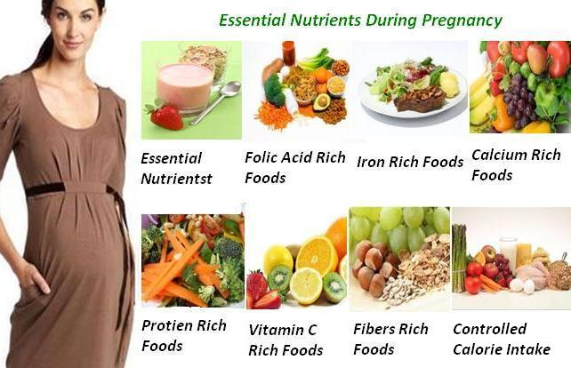 Essential Nutrients During Pregnancy1